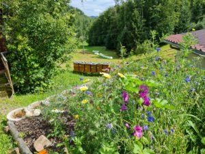 Unsere Bienenweide